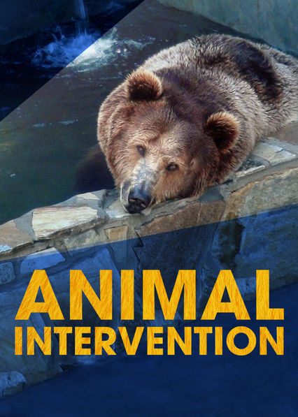 Animal Intervention on Netflix Canada
